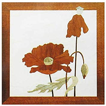 "Craft Supplies Red Poppy 7"" x 7"" Marquetry Kit # 307"