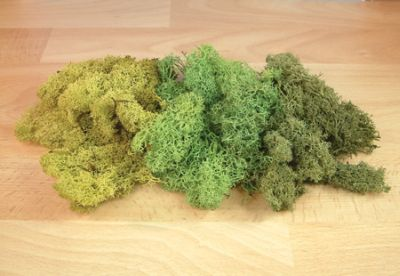 Expo Tools - Mixed Green Lichen Super Value 50g Bag # 59103
