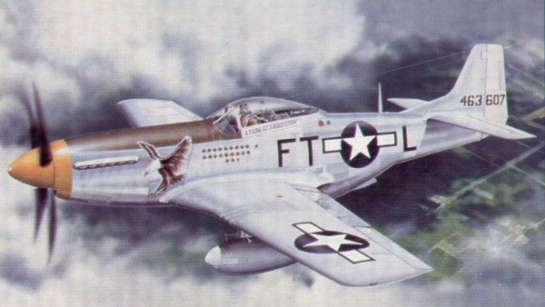Trumpeter 1/24 North American P-51D Mustang IV # 02401